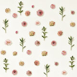Pattern Made from Summer Pink Flowers and Green Leaves on Light Royalty Free Stock Photos