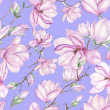 Pattern with magnolias Royalty Free Stock Photography