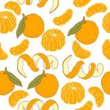 Pattern with mandarins Stock Image