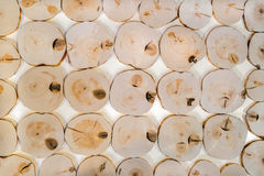 Pattern from many decorative interior unpolished alder wooden saw cuts on white background. Stock Photo