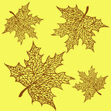 Pattern of maple leaves Royalty Free Stock Images