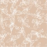 Pattern 15 md. Seamless pattern of white contour orchid flowers on a light brown background vector illustration