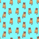 Pattern with melancholy cat Royalty Free Stock Images