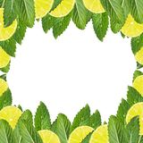Pattern of mint leaves and lemon slices royalty free stock photography