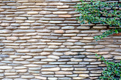 pattern modern style design decorative cracked real stone wall Stock Photography