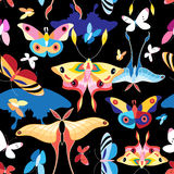 Pattern multicolored butterflies Royalty Free Stock Image