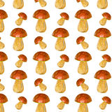 A pattern of mushrooms Stock Images