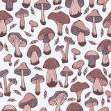 Pattern with mushrooms Stock Photo