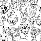Pattern with muzzles of dogs of different breeds Stock Photography