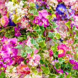 Pattern of natural flowers background Stock Image