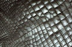 Pattern, Net, Metal, Mesh royalty free stock photography