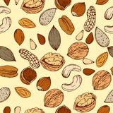 Pattern nuts. Seamless pattern from different nuts in retro styles drawn by hand, sketch Stock Photography