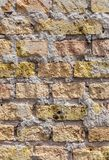 Pattern of an old brick wall Stock Photography