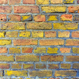 Pattern of old brick wall with harmonic colors Royalty Free Stock Photos