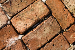Pattern of old bricks in snow and ice 2 Royalty Free Stock Images