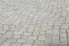 Pattern of old cobble stone road Stock Image
