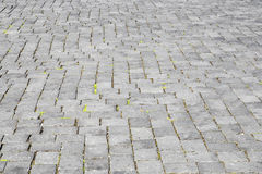 Pattern of old cobble stone road Stock Images