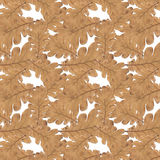 Pattern old dry yellow autumn oak leaves Royalty Free Stock Photos