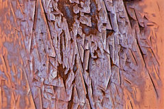 The pattern of the old painting and the rusty metall Royalty Free Stock Photos