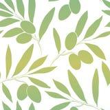 Pattern olive branch on vintage paper. Decorative olive branch.For label, pack Stock Illustration