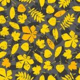 Pattern of orange leaves on gray background. ECO autumn Nature wallpaper. BIO design Stock Photos