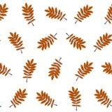 Pattern of orange leaves on white background. ECO autumn Nature wallpaper. BIO design Royalty Free Stock Image