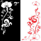 pattern  with orchid flower Royalty Free Stock Image