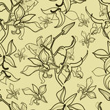Pattern with orchid flowers Stock Photo