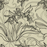 Pattern with orchid flowers. Vector seamless floral pattern with orchid flowers Royalty Free Stock Image