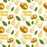 Pattern organic pears. Organic pattern pear retro styles Stock Images