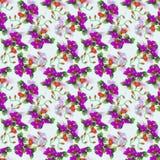 Pattern04 oriental Imagens de Stock Royalty Free