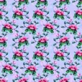Pattern011 oriental Imagem de Stock Royalty Free