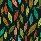 Pattern with ornate feathers Stock Image