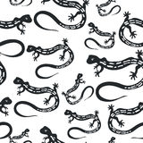 Pattern outline drawing black lizard  on a white Royalty Free Stock Images