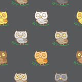 Pattern with owls. Stock Images