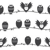 Pattern with owls. Royalty Free Stock Photo