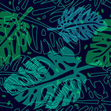 Pattern with palm leaves. Tropical pattern with palm leaves, vector seamless pattern Royalty Free Stock Photography