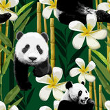 Pattern of the panda and flowers Royalty Free Stock Image