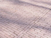 Pattern of pavers in a park Royalty Free Stock Photo