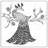 Pattern peacock on a branch black and white. Pattern peacock on a branch black white vector illustration