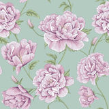 Pattern peony flower illustration Royalty Free Stock Photography