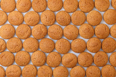 Pattern pepernoten, ginger nuts Sinterklaas Royalty Free Stock Image