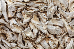 Pattern with pieces of dried drift wood Stock Images
