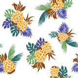 Pattern of pineapple Royalty Free Stock Photos
