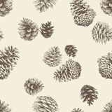 Pattern of the pinecones Stock Images