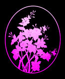 Pattern pink flower of glass on black background Stock Photography