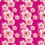 Pattern with pink peonies Stock Photo