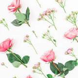 Pattern of pink or red roses, buds and leaves on white background. Flat lay, top view. Floral pattern Royalty Free Stock Images