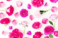 Pattern with pink rose flowers, petals and peonies flowers on white background. Flat lay, Top view. stock photos