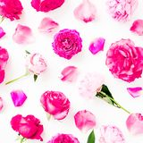 Pattern with pink rose flowers, petals and peonies on white background royalty free stock photo